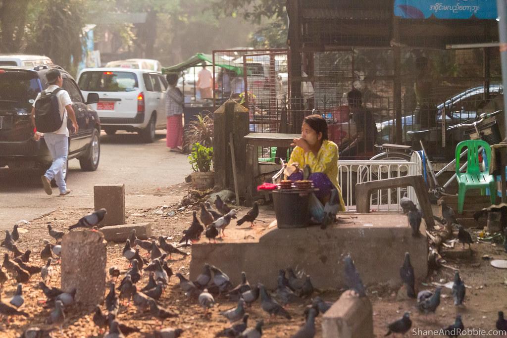 Myanmar-20180319-9998