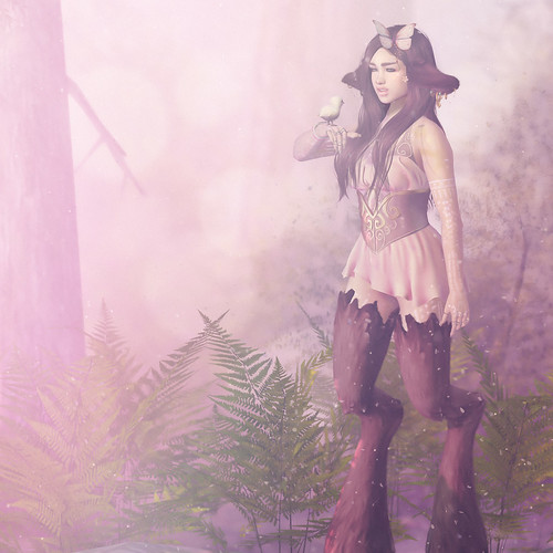 [SRB] Faun in the Forest