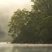 Hawkesbury Fog