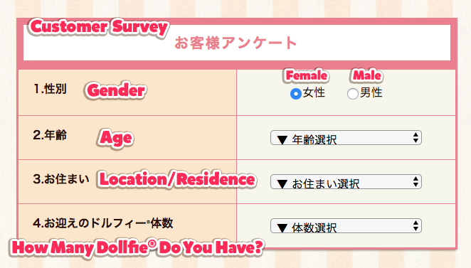 Survey Labels in Japanese