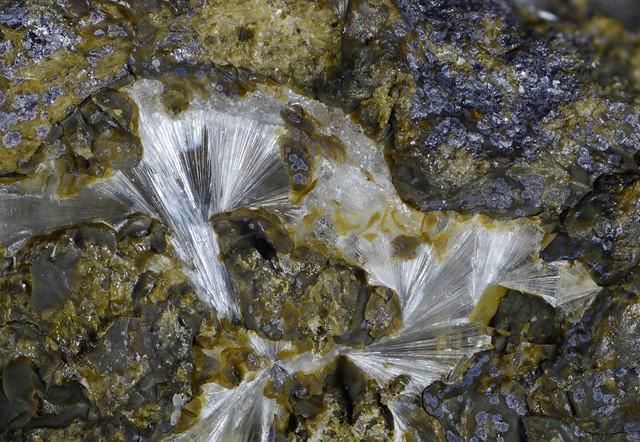 灰エリオン沸石 / Erionite-Ca