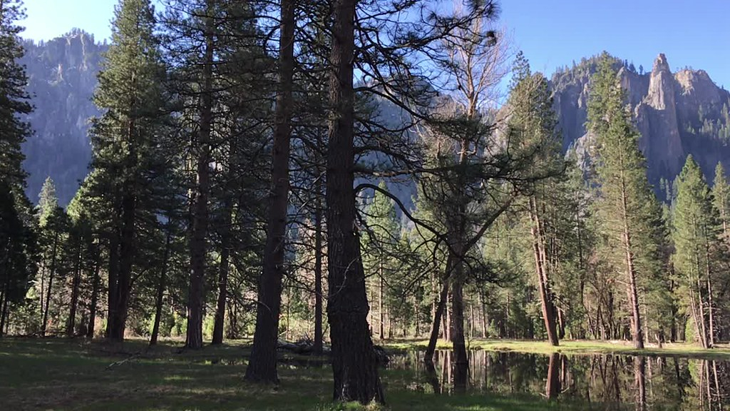 Panorama at Yosemite Valley | Yosemite National Park, California