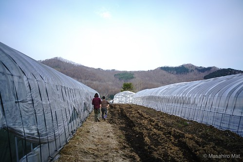 Takada farm