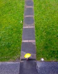 A yellow spot