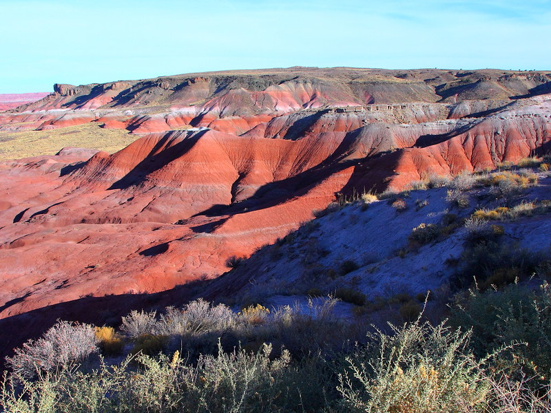 IMG_7304 Lacey Point, Petrified Forest National Park