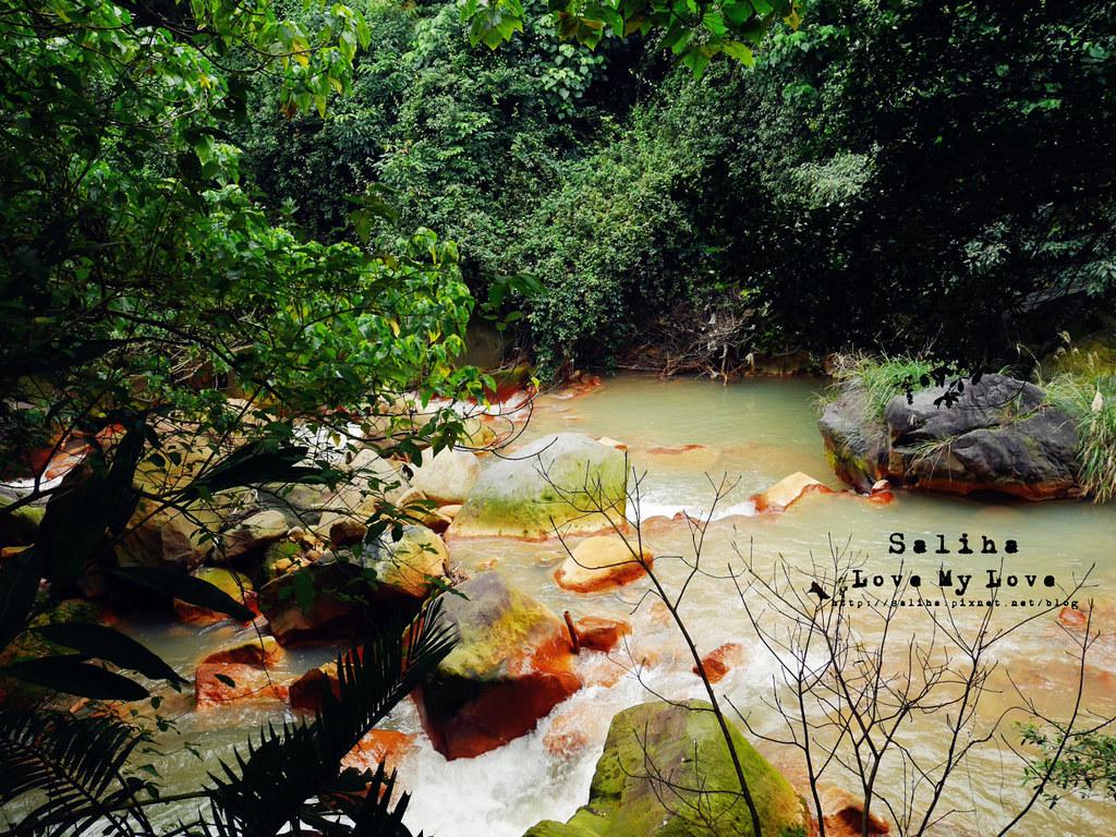 台北士林區天母一日遊行程推薦天母公園 (19)