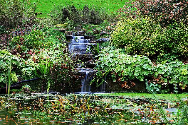 Brundall Gardens underground spring falls