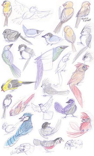 4.1.18 - Easter Birds