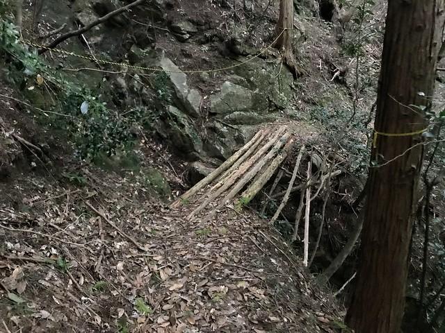 仙ヶ岳 白谷道 朽木橋