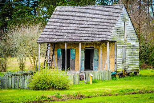 Old Cajun Homestead