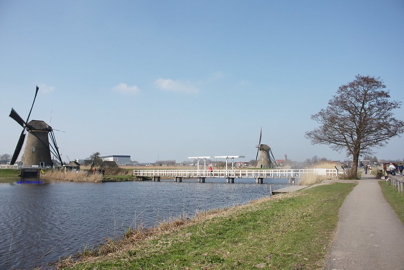 travel-Netherlands-Rotterdam-Kinderdijk-BLOG-17docintaipei (18)