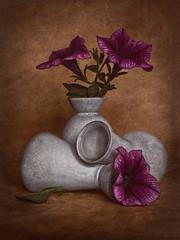 Campanillas y floreros