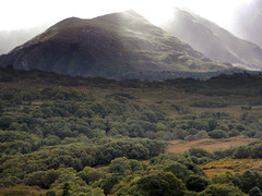 Fog-shrouded mountain on the drive from Killarney to Beara Peninsula in Ireland