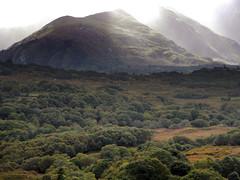 Fog-shrouded mountain on the drive from Killarney to Beara Peninsula in Ireland