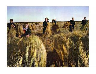 184 Пионеры на уборке пшеницы