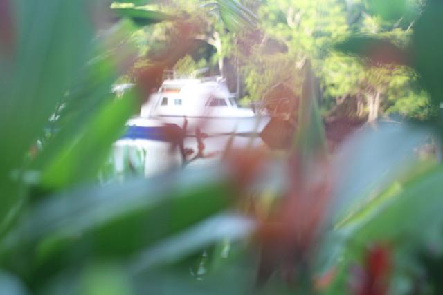 IMG_8296, Canon EOS 60D, Tamron SP 60mm f/2 Macro Di II