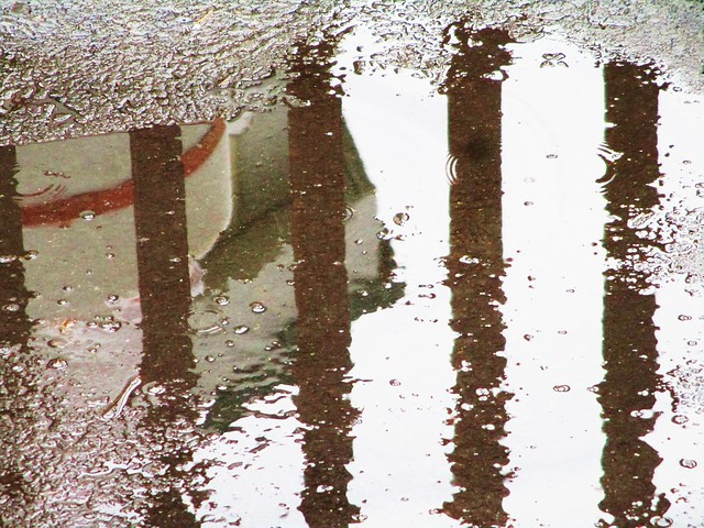 reflection, Canon POWERSHOT ELPH 160