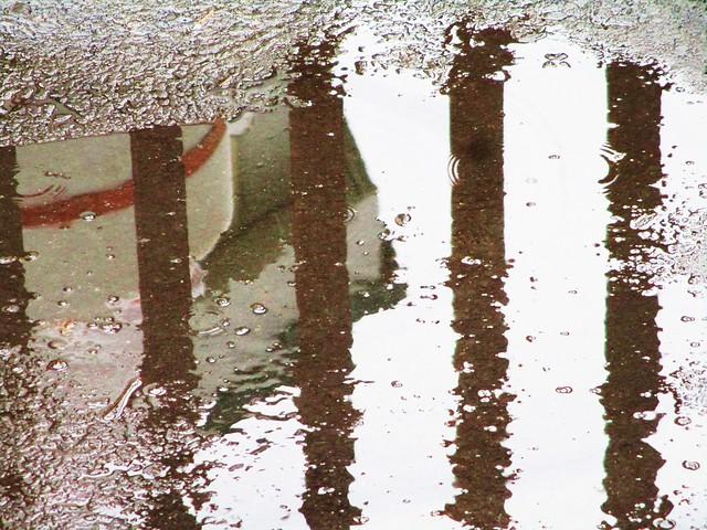 reflection, Canon POWERSHOT ELPH 160