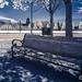 Capitol Bench - IR