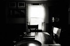 Afternoon Light