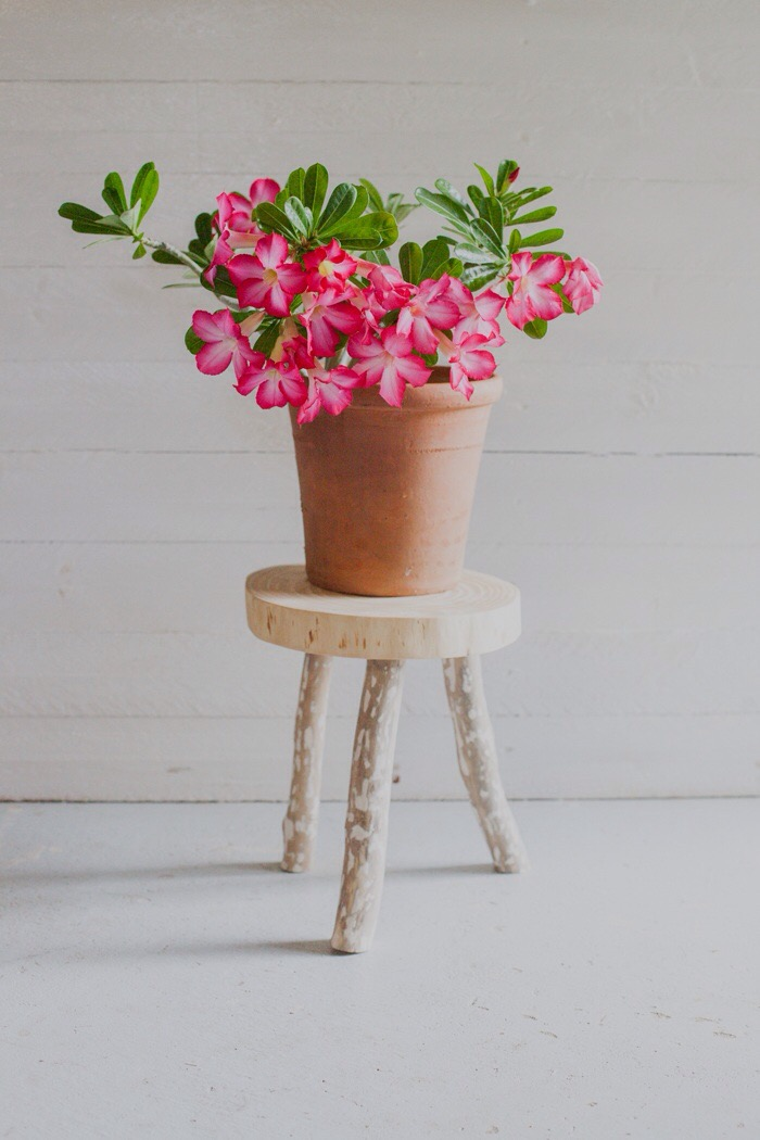 March - stool