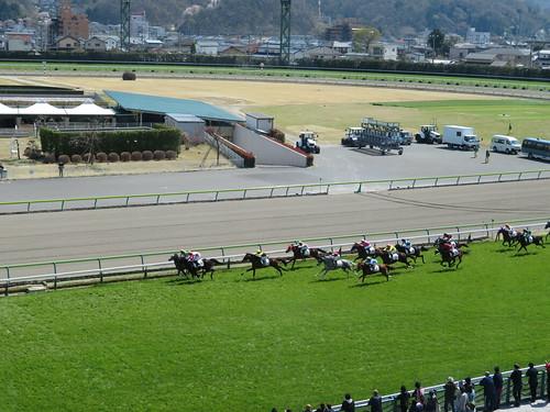 福島競馬場の4階からのレース風景