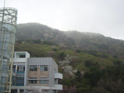 Kosin University