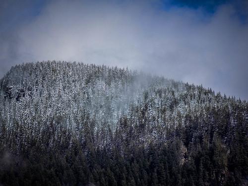 Snowy Cascades