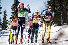 Povedená sezona Bauerovy družiny: 4. místo mezi týmy i řada individuálních úspěchů