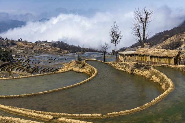 *Yuanyang @ Bada terraced rice fields*