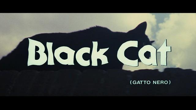 blackcattitoli