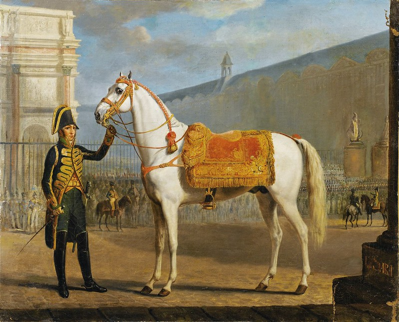 Alexandre-Ivanovitch Sauerweid - Sara, Napoleon's horse