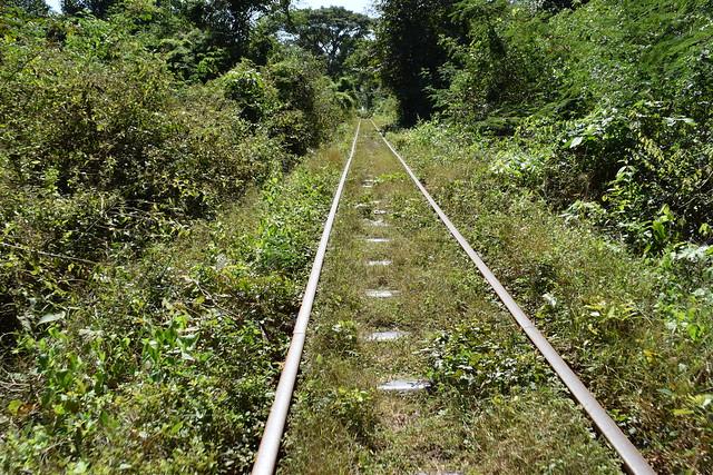 田舎の線路を