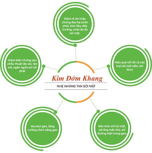 Cơ chế Kim Đởm Khang