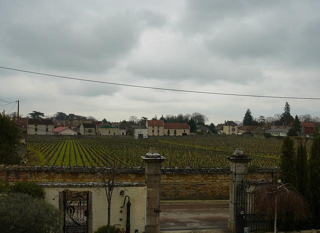 Bourgogne-6.jpg