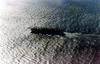Japanese long liner, Cook Strait 1991