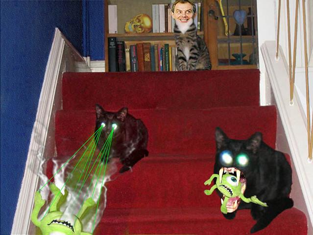 Cats Vs ??? Part 5