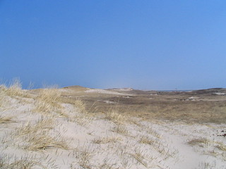 Megan's trip to Sable Island