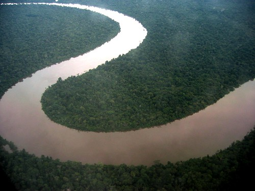 The Amazon river from the air