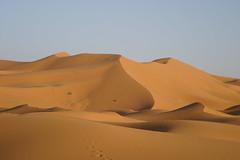 formation(0.0), wadi(0.0), erg(1.0), sand(1.0), aeolian landform(1.0), natural environment(1.0), desert(1.0), dune(1.0), landscape(1.0), sahara(1.0), singing sand(1.0),