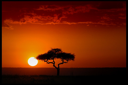 Sunset in Kenya - Masai Mara
