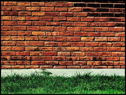 Brick Wall:Green Grass