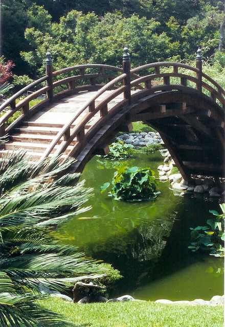 A Bridge In The Japanese Garden