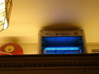 Kill Pest