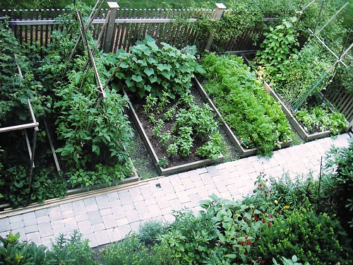 Home vegetable garden design beautiful modern home for Fun vegetable garden ideas