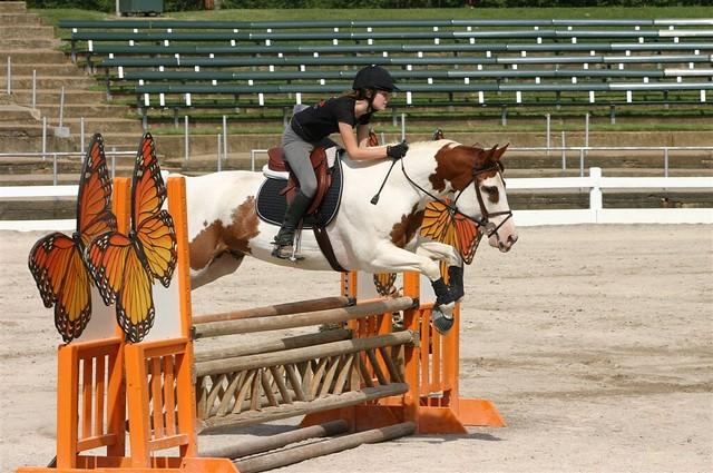Pony Club Show September 2006  20105 - 20060930