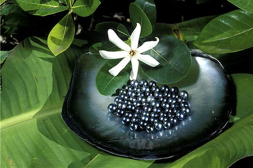 Black pearls