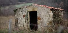Cabane de vigne.(Vic le Comte et lachaux) - Photo of Sallèdes