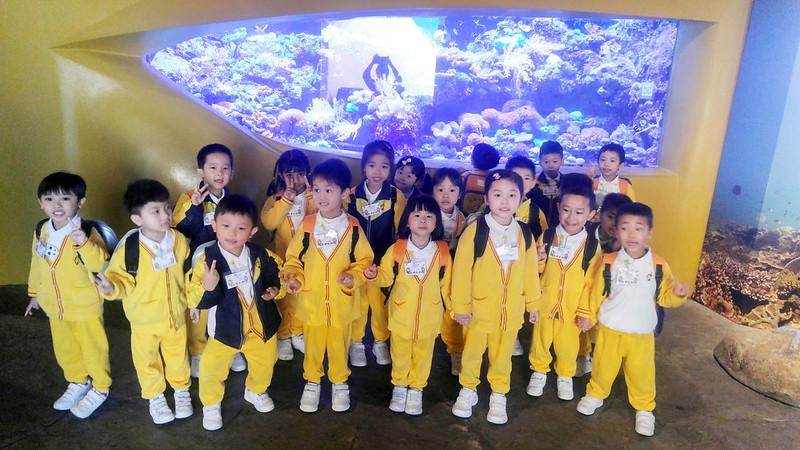 香港海洋公園學院 – 微小生物班學習活動(K2)