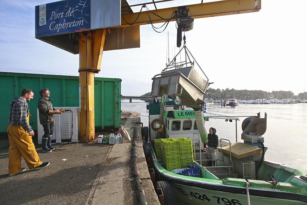 Le marché aux poissons du port de Capbreton